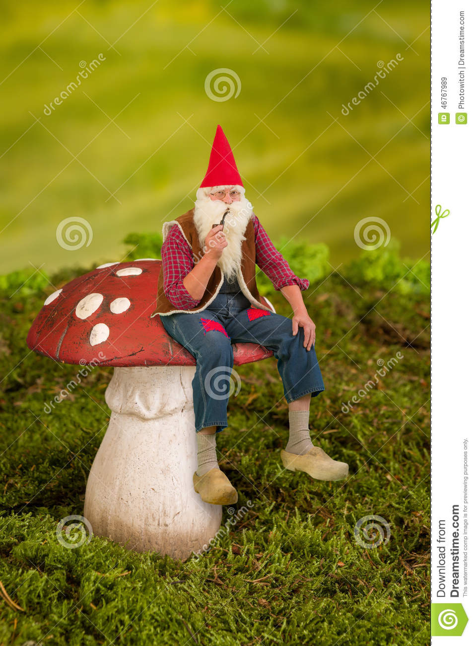 Real Gnomes: Gnome On Toadstool Stock Image. Image Of Mushroom, Grass