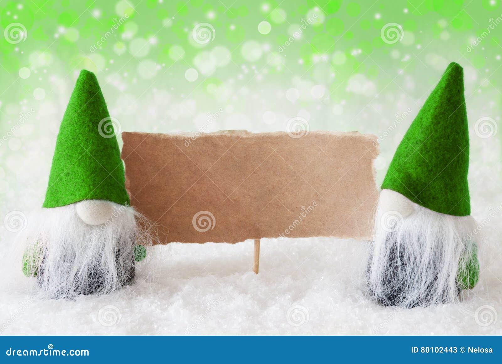 Gnomos naturais verdes com cartão, espaço da cópia