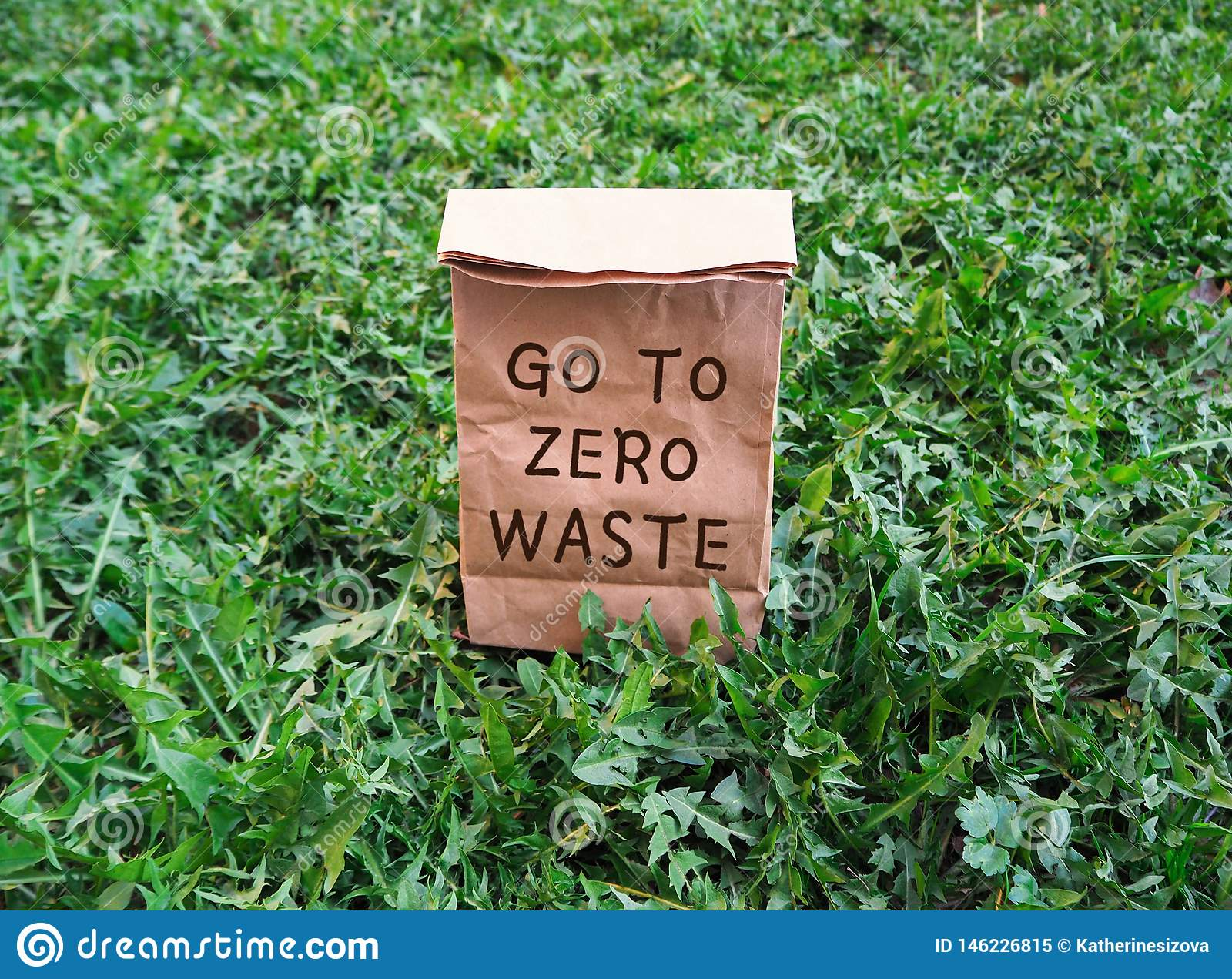 Go to zero waste ecological shopping bag on the green grass
