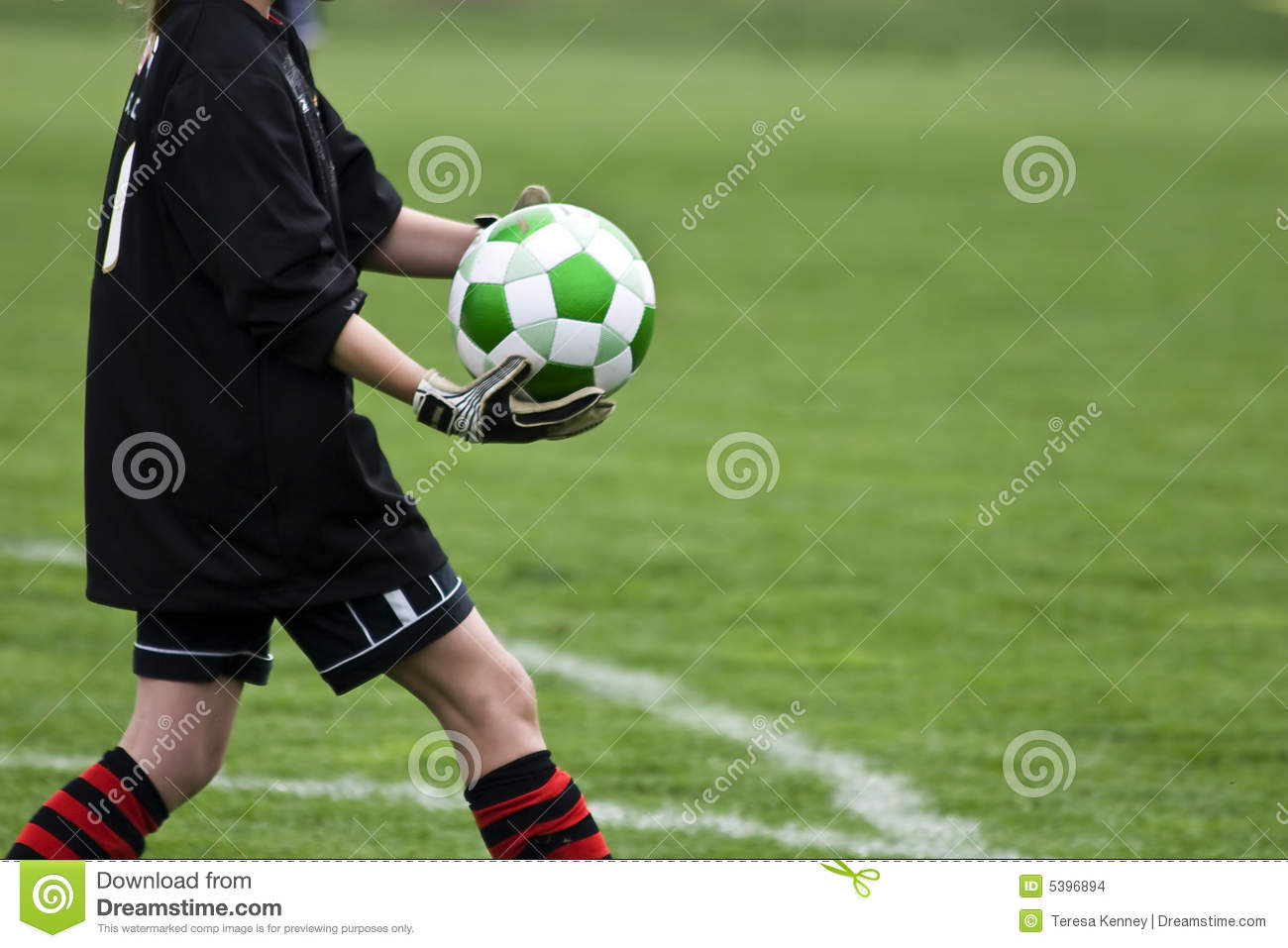 Goalie with Ball stock photo  Image of essence, copy