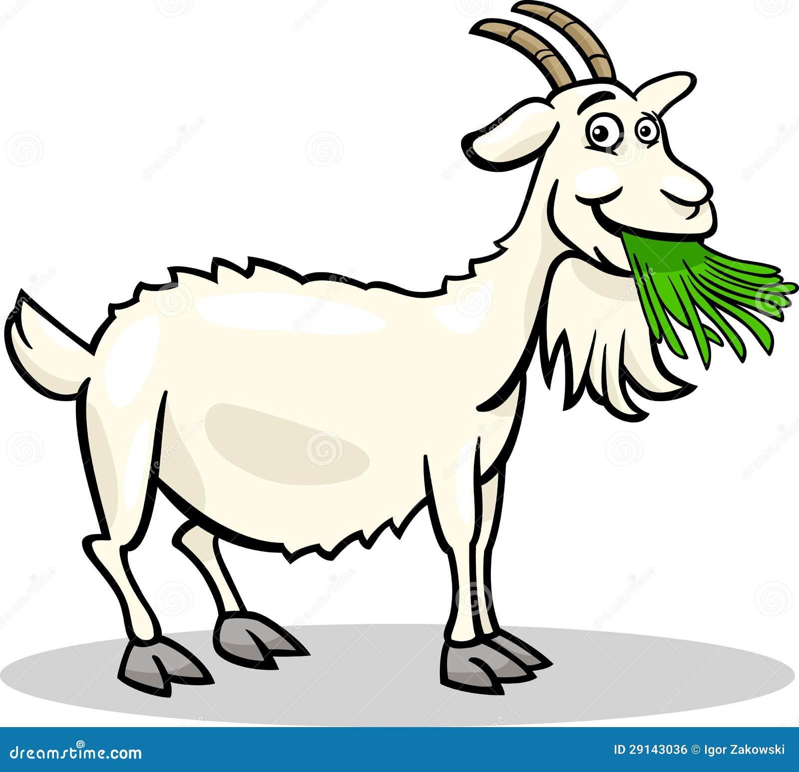 Goat Farm Animal Cartoon Illustration Royalty Free Stock Image - Image ...