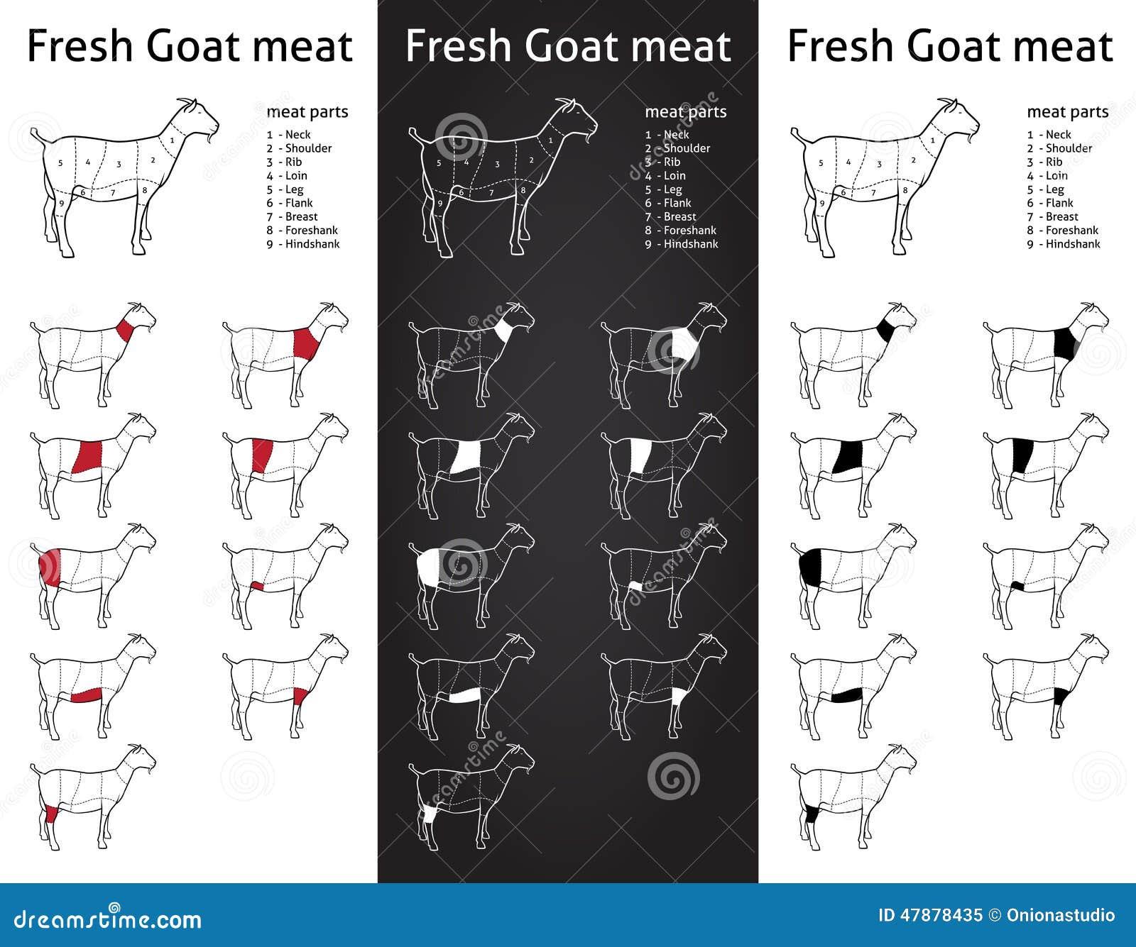 Goat Meat Cuts Scheme Set