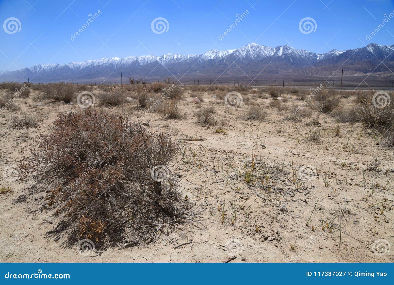 Gobi-Wüste mit Schnee moutains