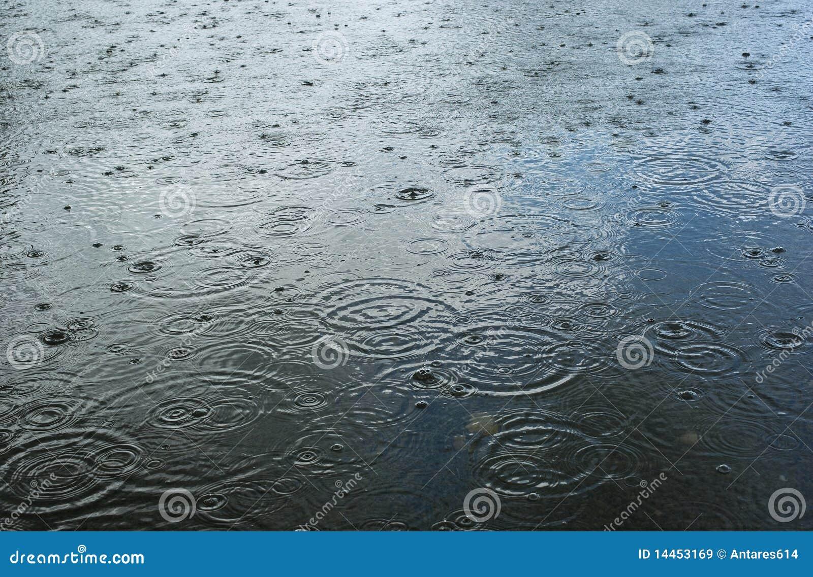 Gocce della pioggia