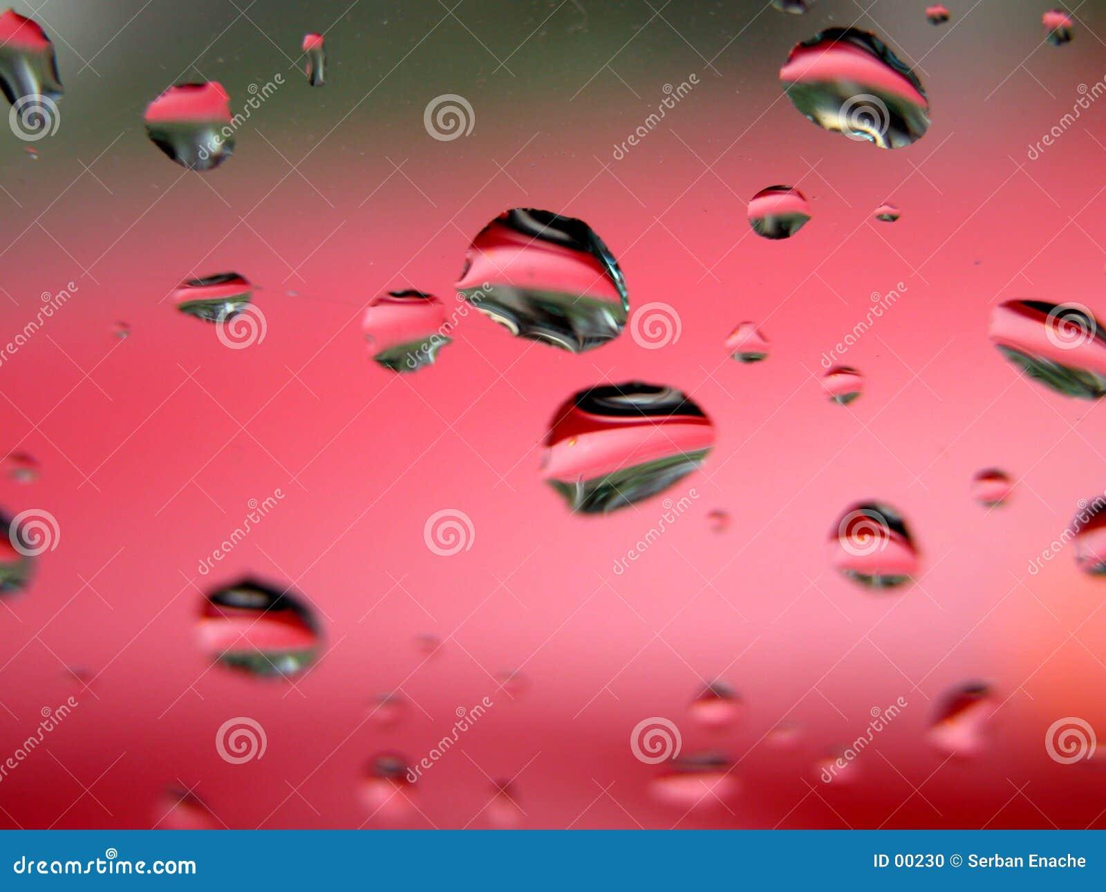 Gocce di acqua - macro marcata
