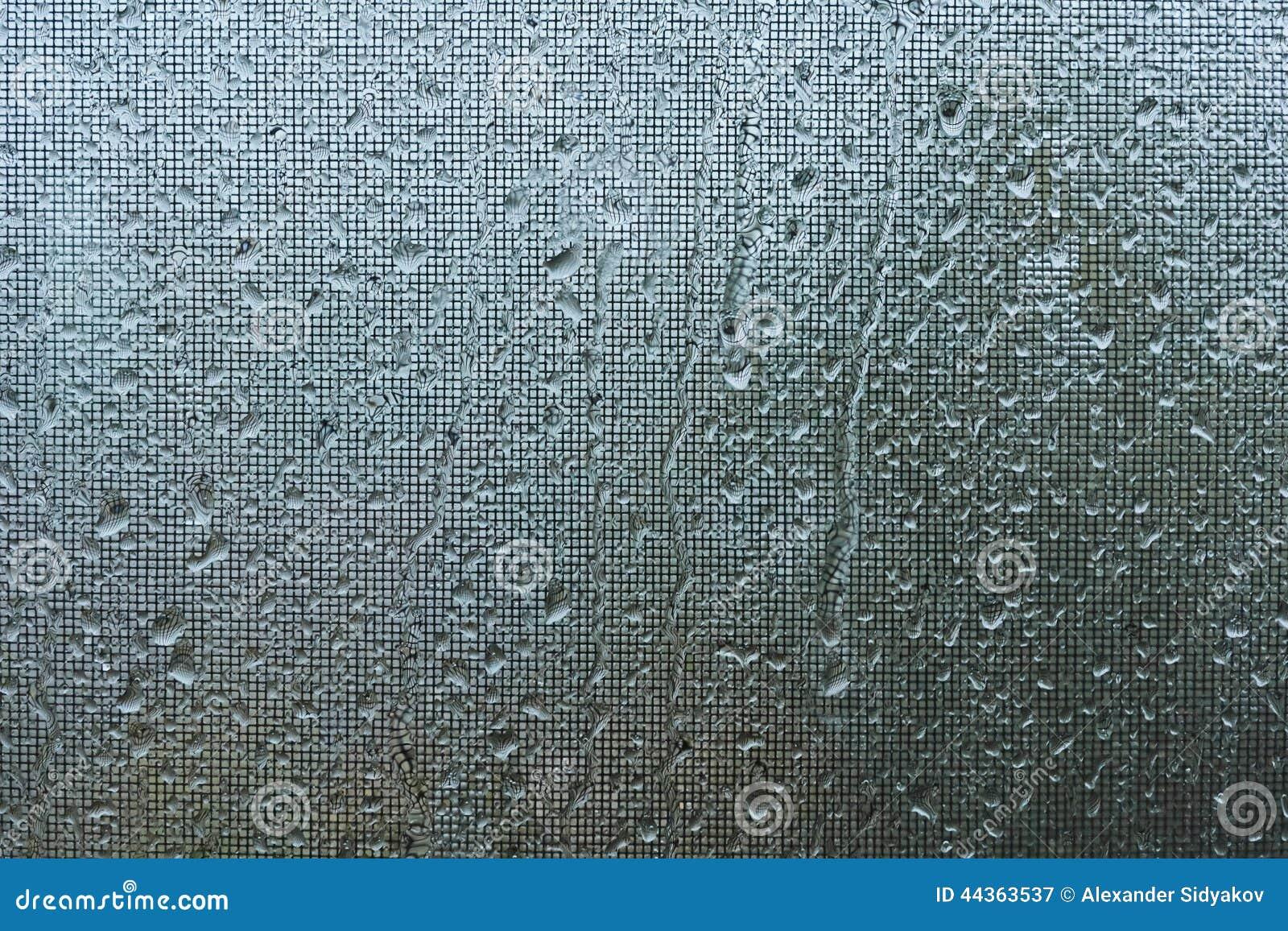 Gocce di pioggia sulla zanzariera