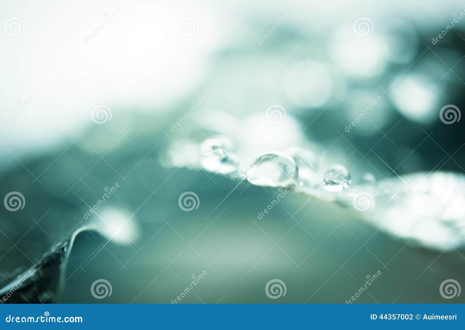 Goccia dell acqua sul foglio