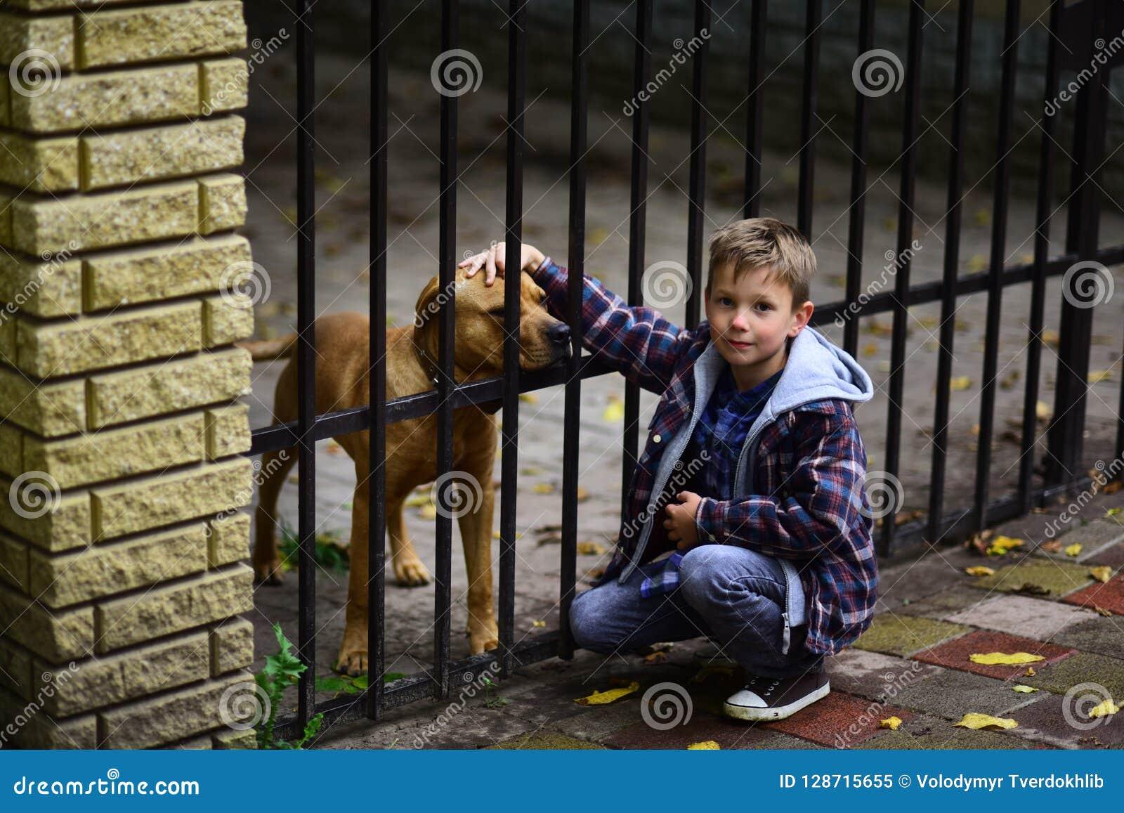 Goce el ser mi perro casero El niño pequeño adopta el perro casero del refugio de animales Juego del niño pequeño con el perro ca