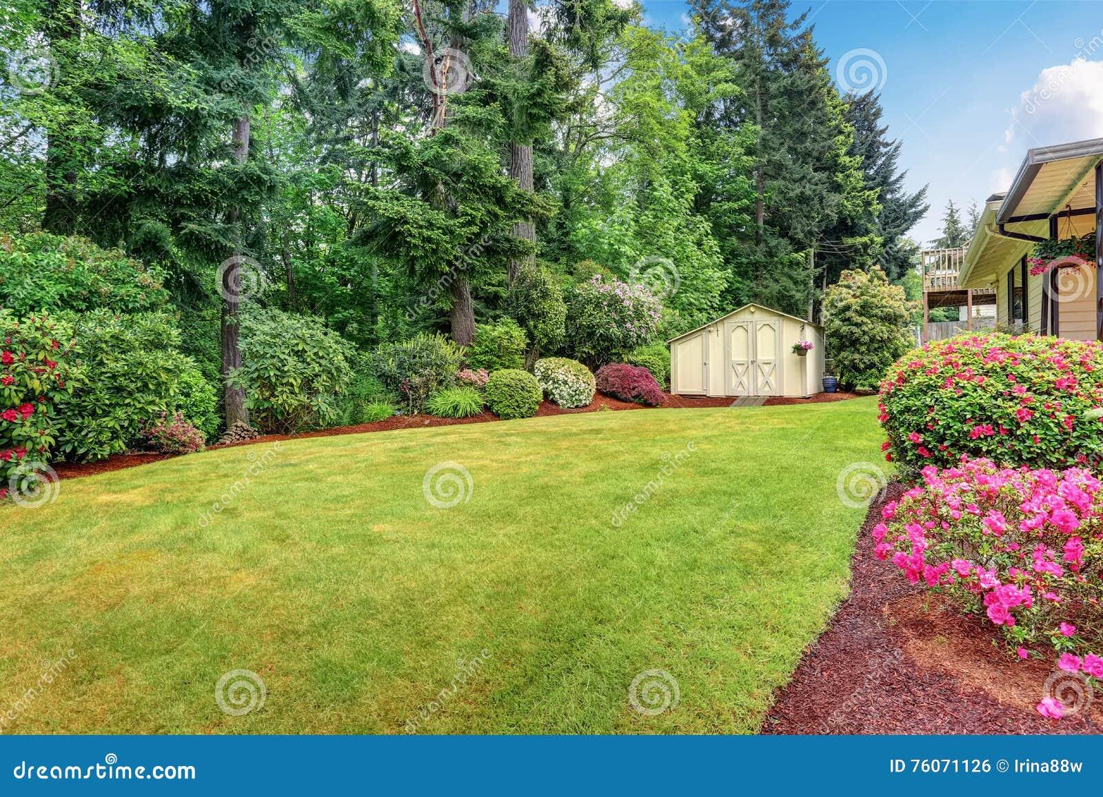 Struiken Met Bloemen Voor In De Tuin.Goed Gehouden Tuin Bij Binnenplaats Met Bomen Struiken En
