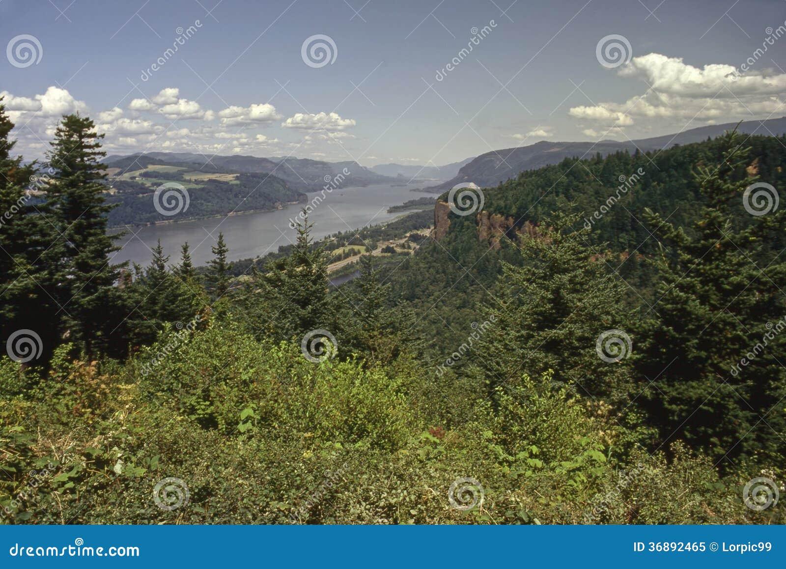 Download Gola del fiume Columbia immagine stock. Immagine di strada - 36892465