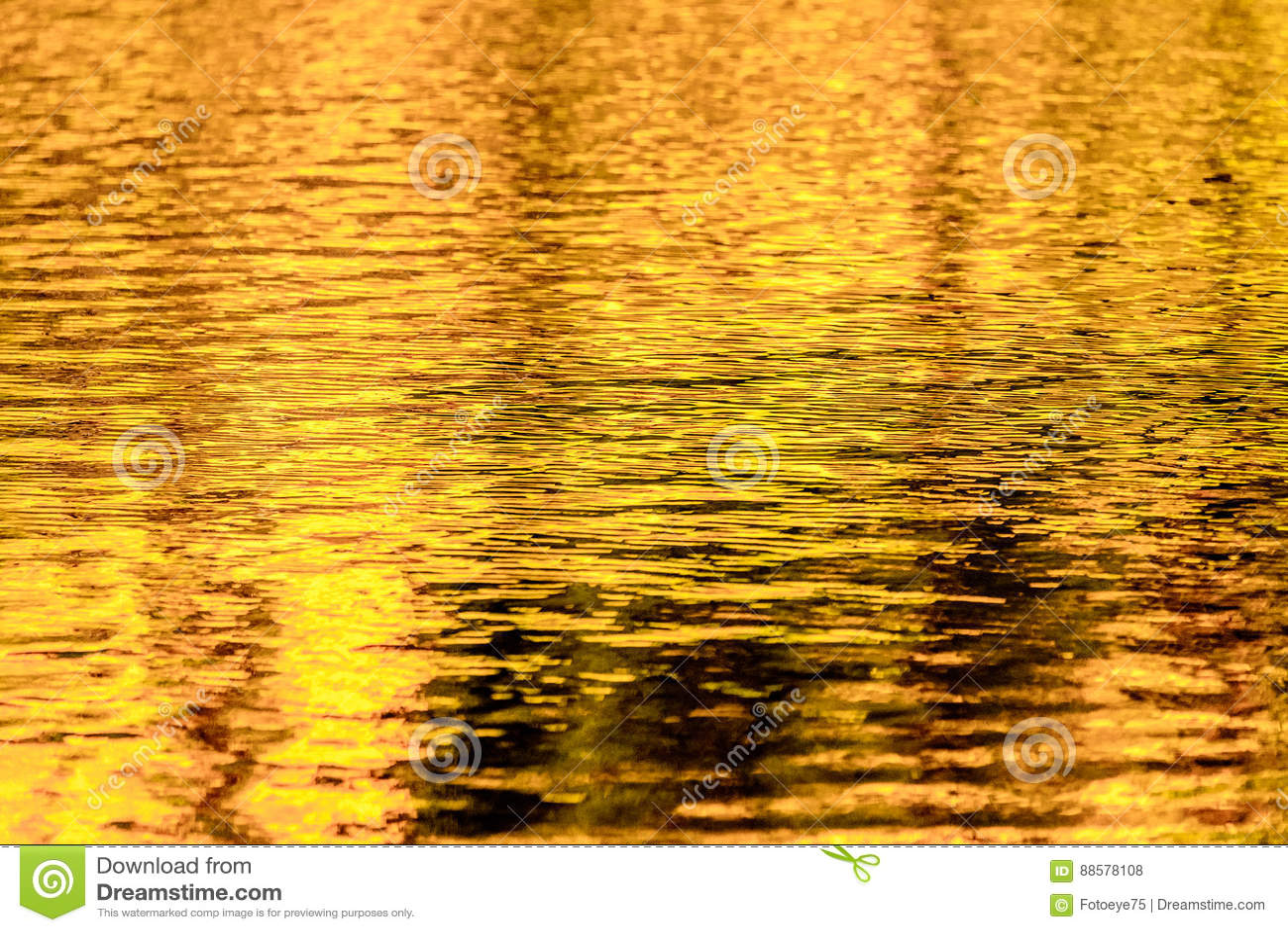Gold autumn lake reflections