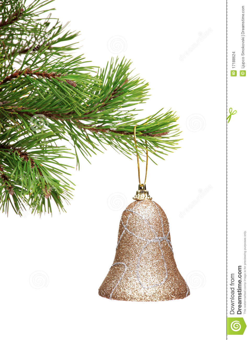 Gold bell hanging on a green christmas tree branch stock