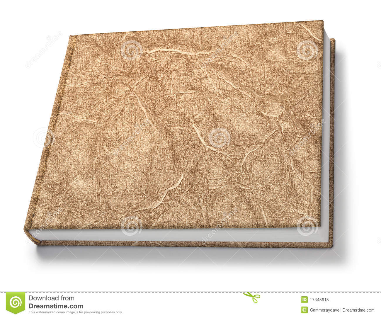 Gold Book Isolated