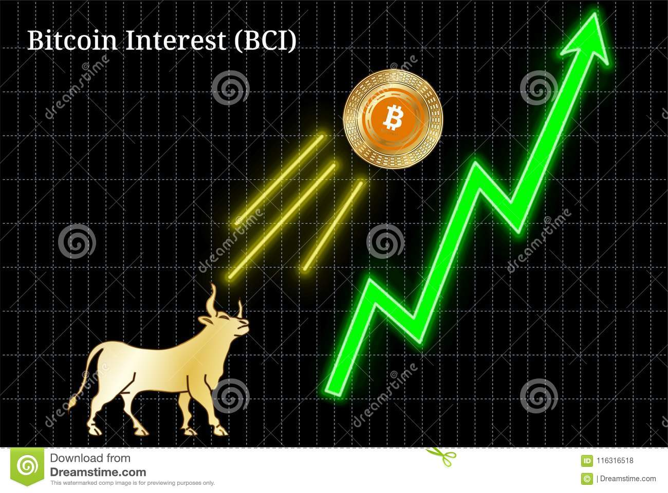 interest in cryptocurrency