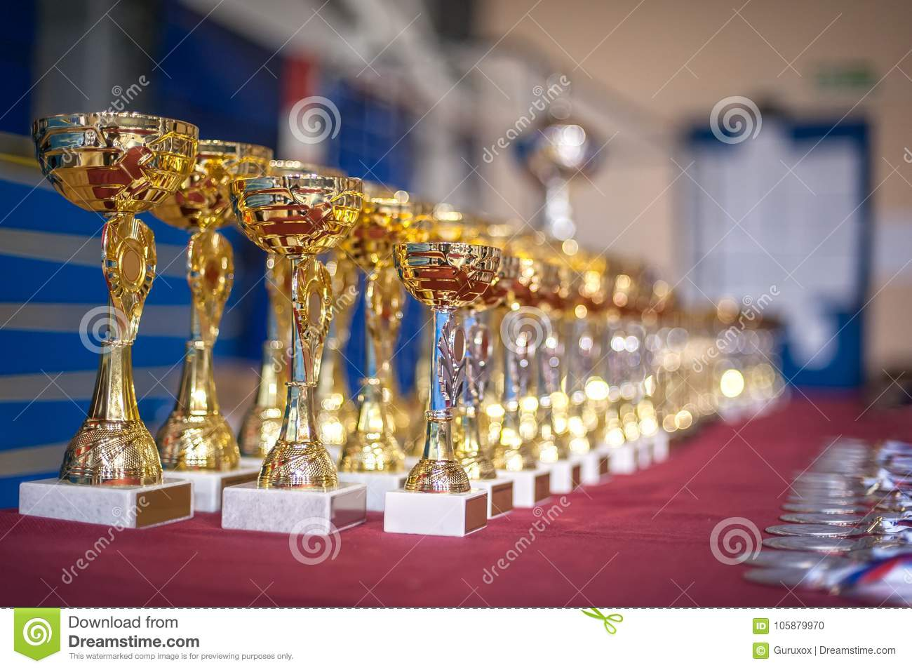 Gold Champion Trophies And Medals Lined Up In Rows Stock