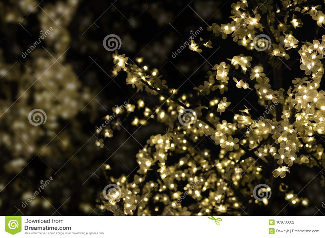 gold christmas lights with black background