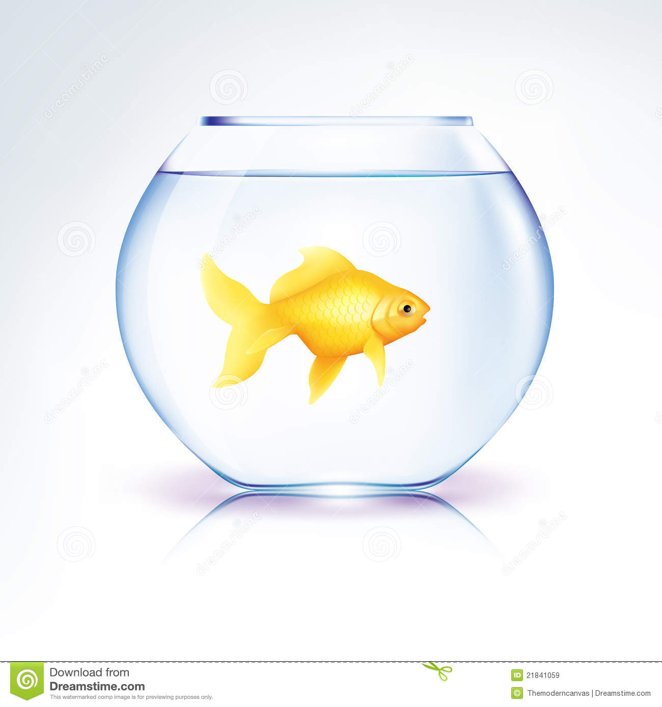 Royalty Free Stock Images: Gold Fish in a bowl