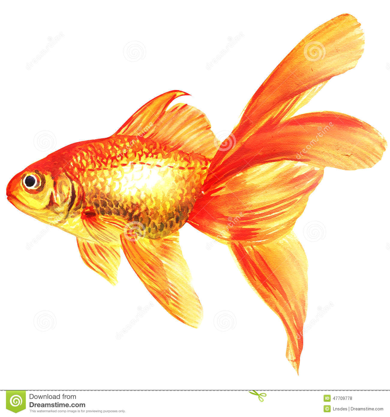 simple painted fish