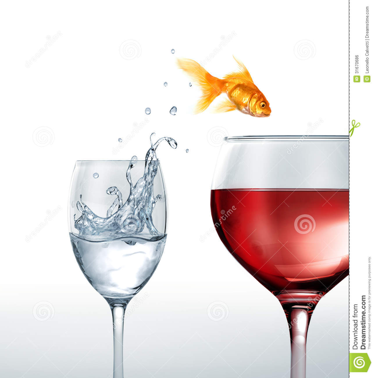 Gold fish smiling jumping from a glass of water to a for Red wine with fish
