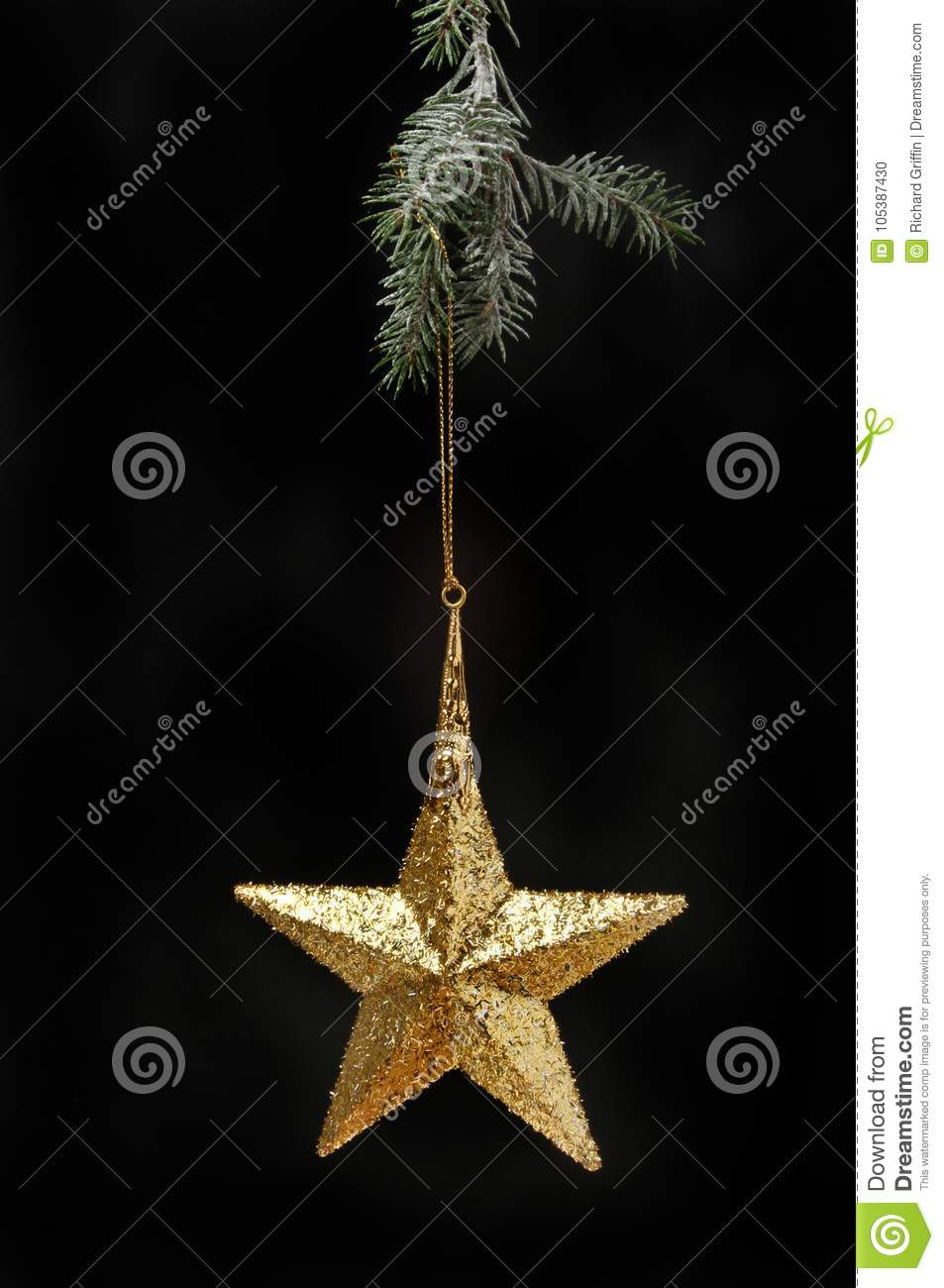 Star decoration in a tree