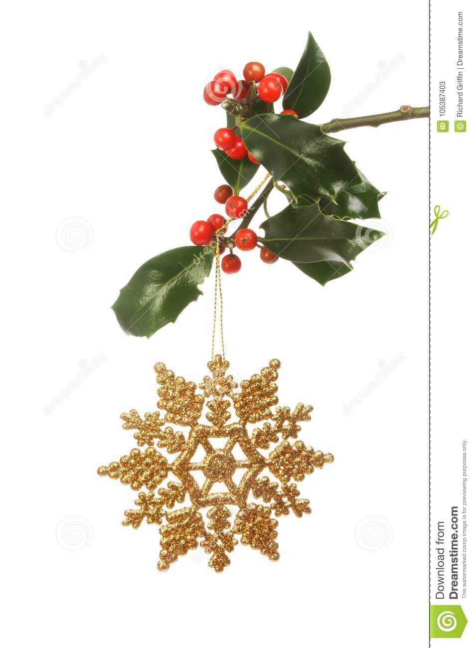 Christmas decoration and holly