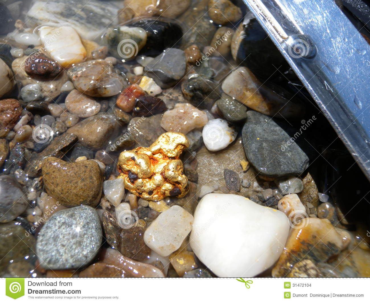 Gold Nugget Stock Photo Image Of Stones Mineral Rare