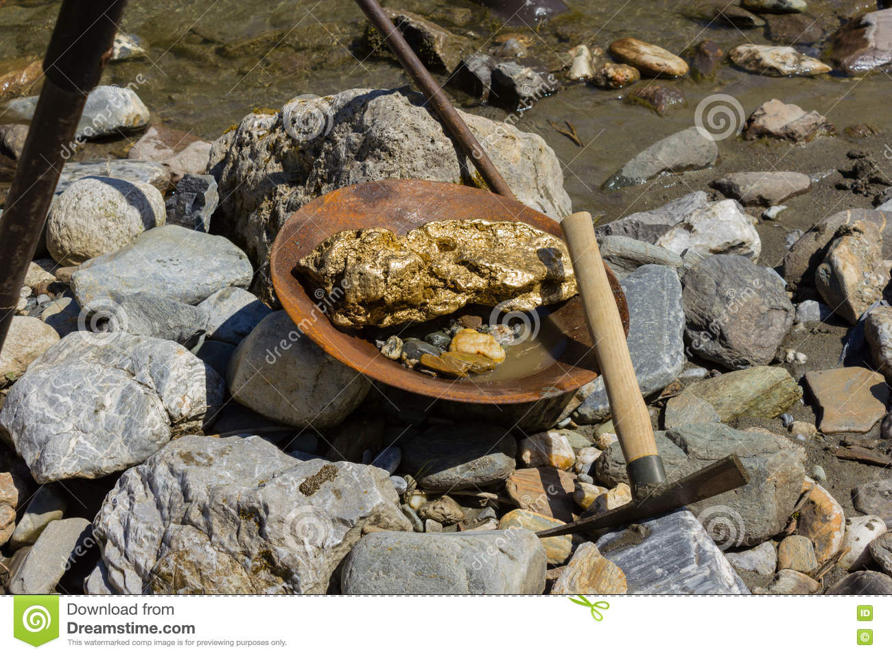 Gold Nugget Mining From The River Stock Photo - Image of creek