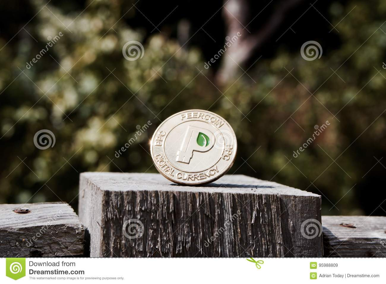 Gold peercoin coin stock image. Image of peercoin, outdoor - 95988809