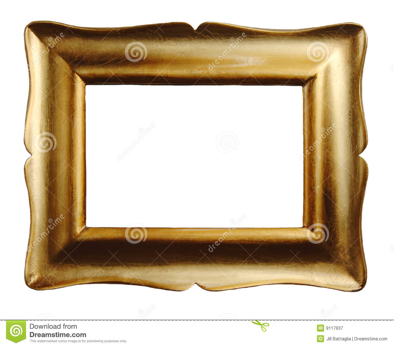 Gold Picture Frame stock image. Image of leaf, nobody - 9117937
