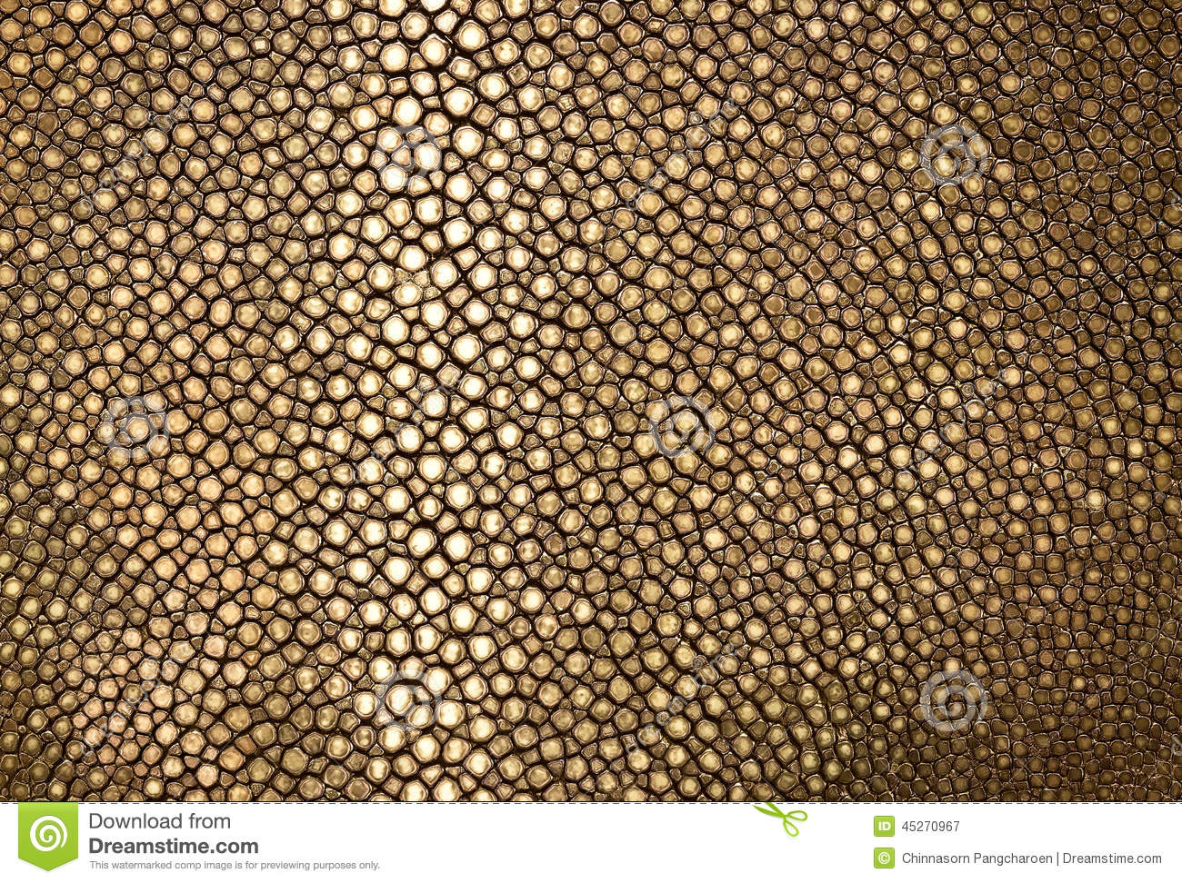 gold ray leather stock image  image of abstract  tint