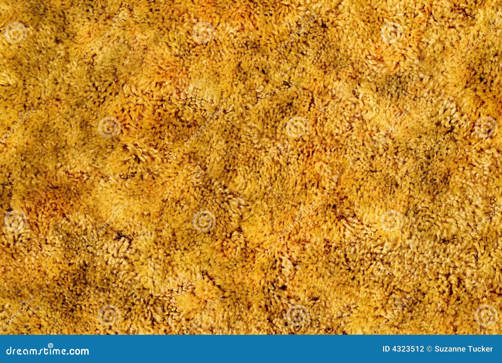 Gold Shag Carpet Stock Photo Image Of Vintage Classic