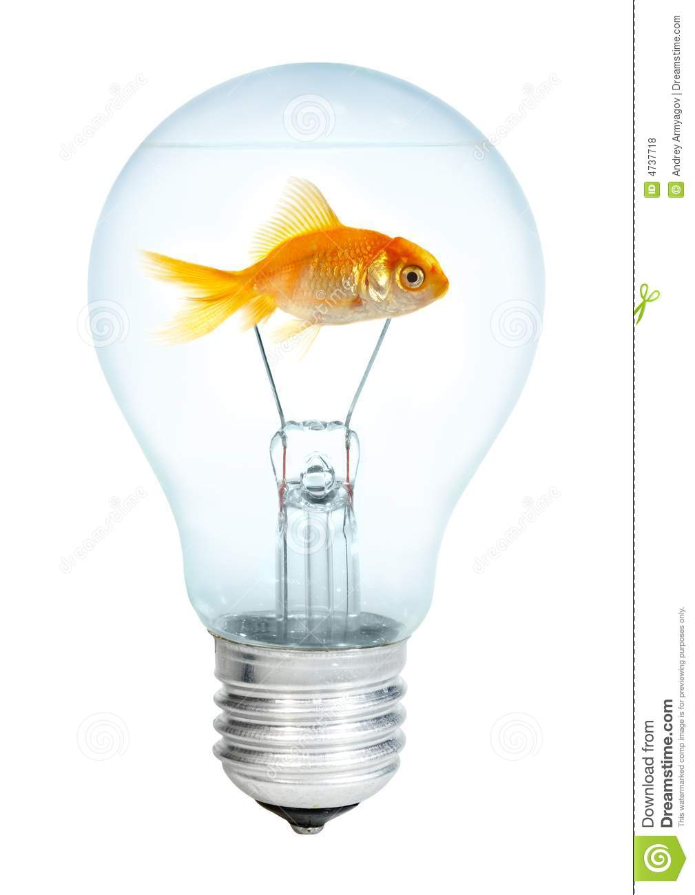 Gold small fish in light bulb