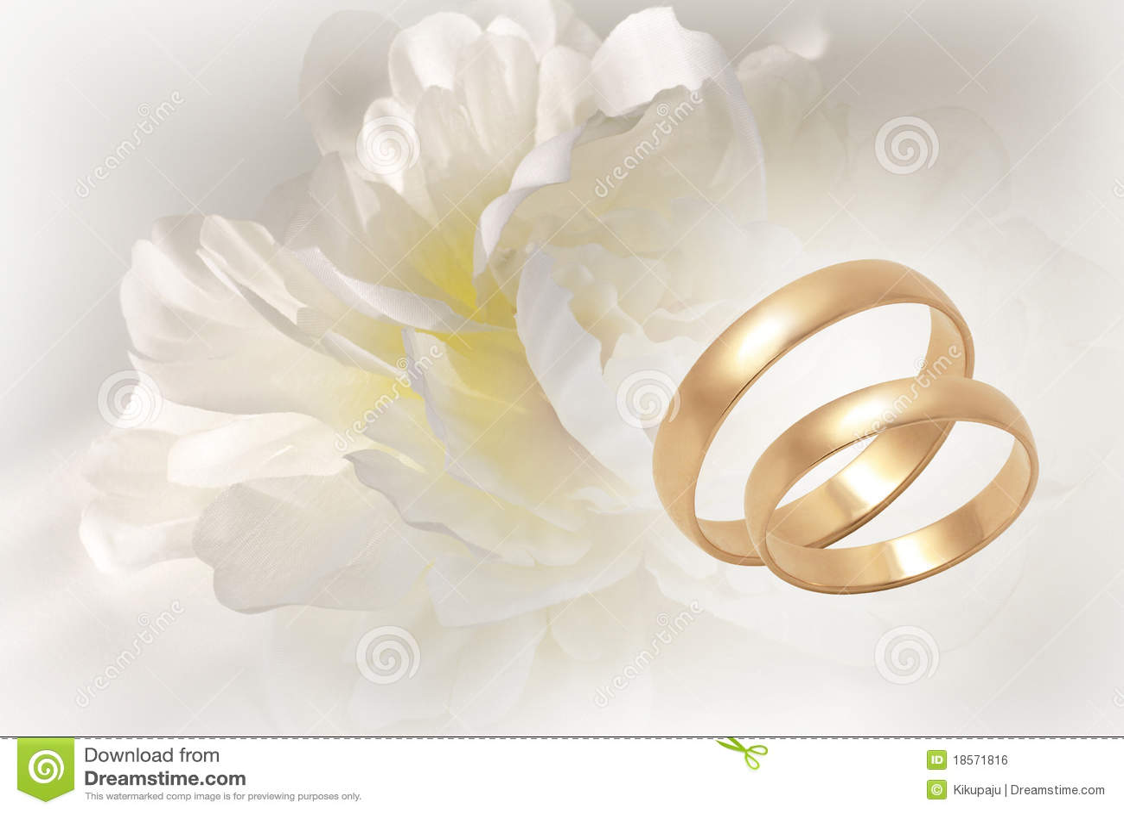gold wedding rings on flowery festive background stock