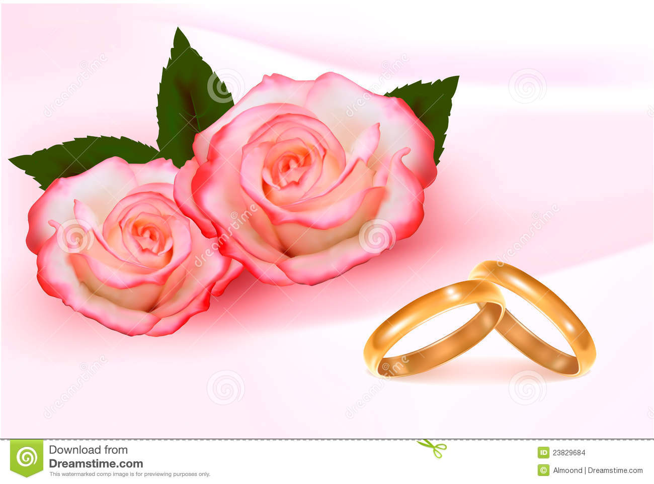 Gold Wedding Rings In Front Of Three Pink Roses Stock Vector ...