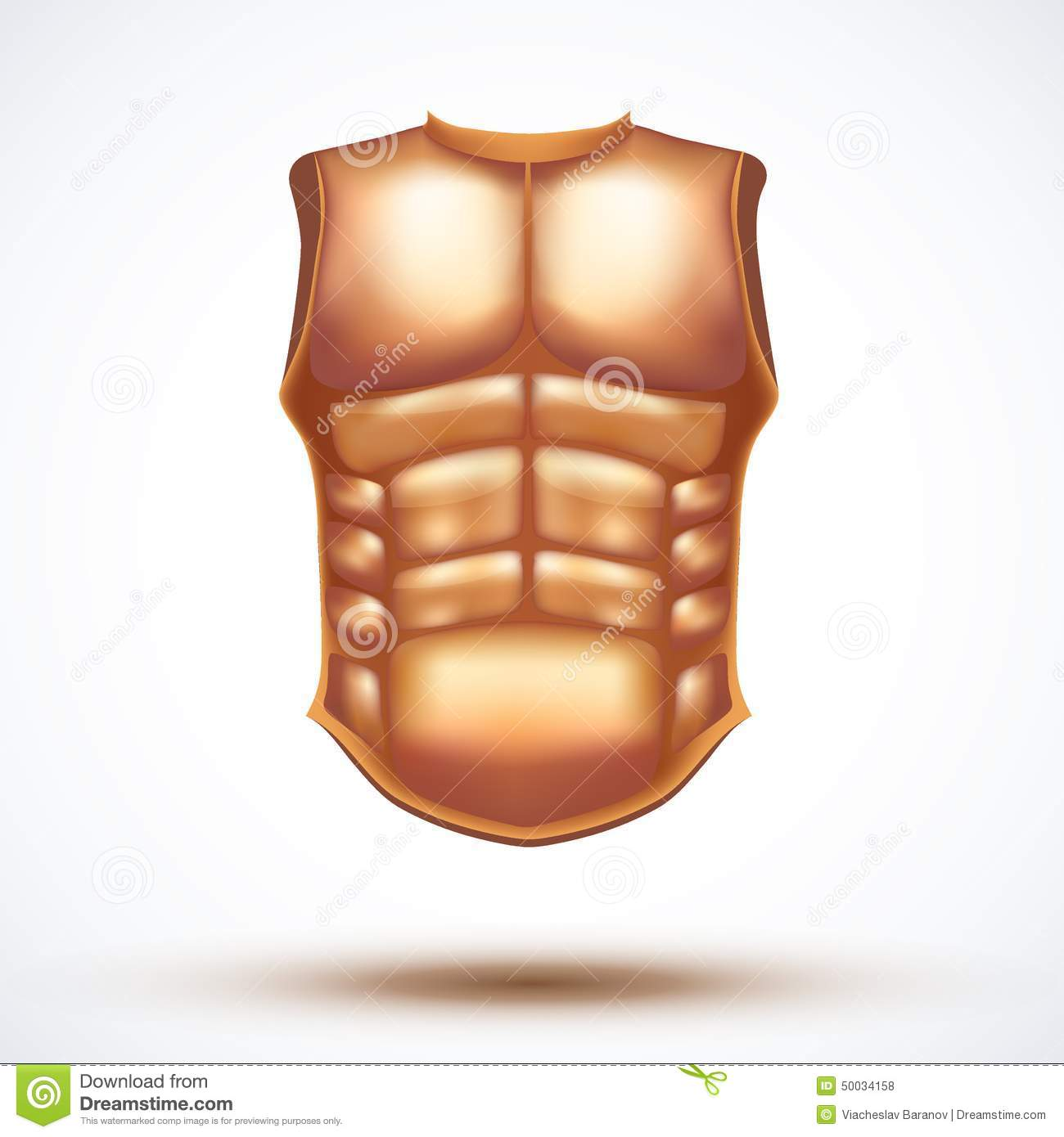 Golden Ancient Gladiator Body Armor Stock Vector - Illustration of ...