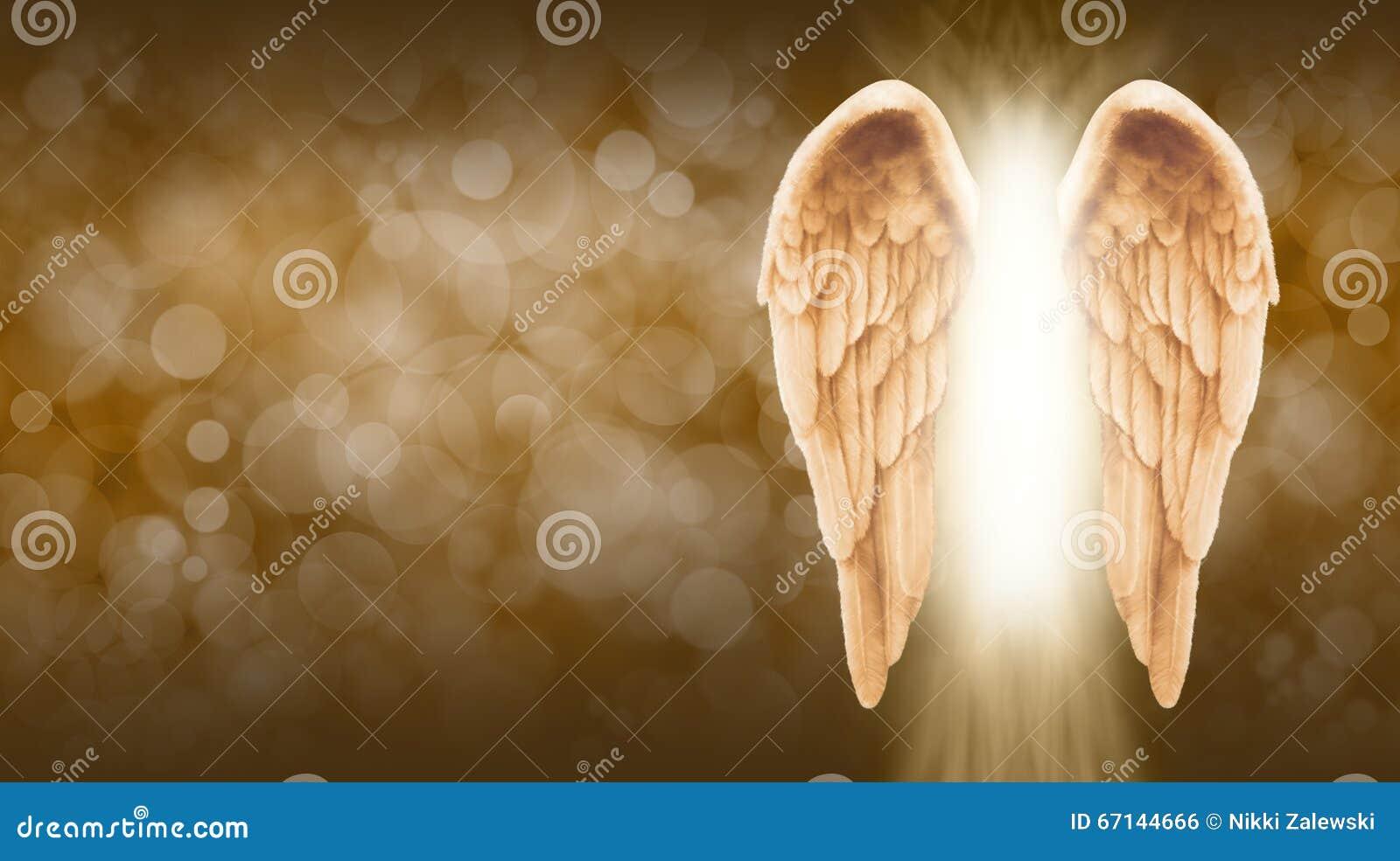 Golden Angel Wings On Golden Brown Bokeh Banner Stock