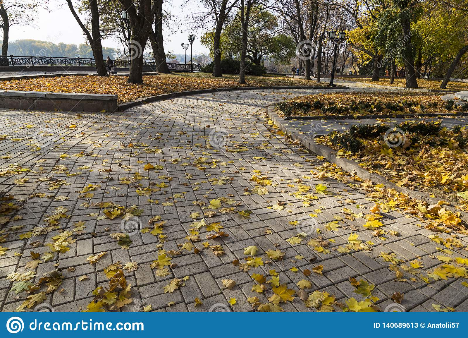 Golden autumn in the city park. City Chernihiv. Ukraine