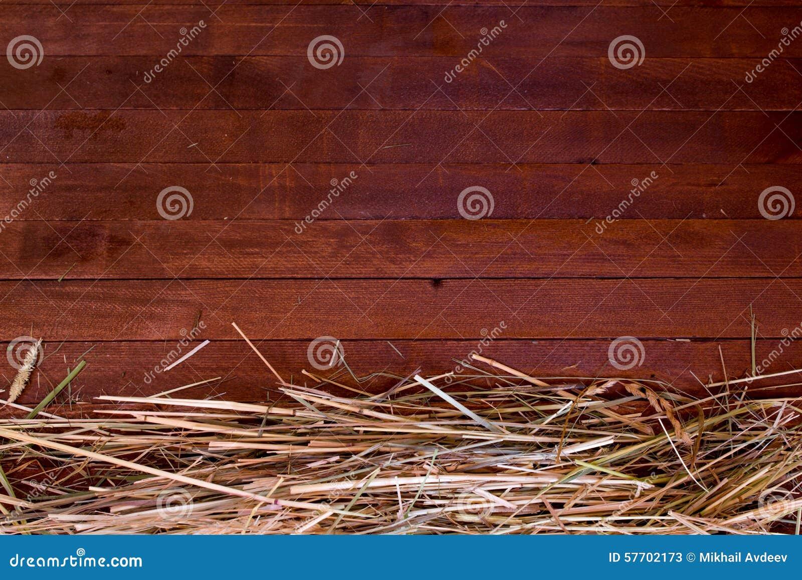 Golden autumn fall hay straw texture background wallpaper