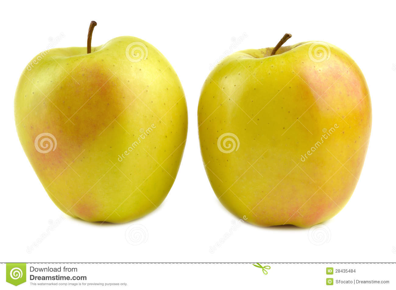 apfel golden delicious tree