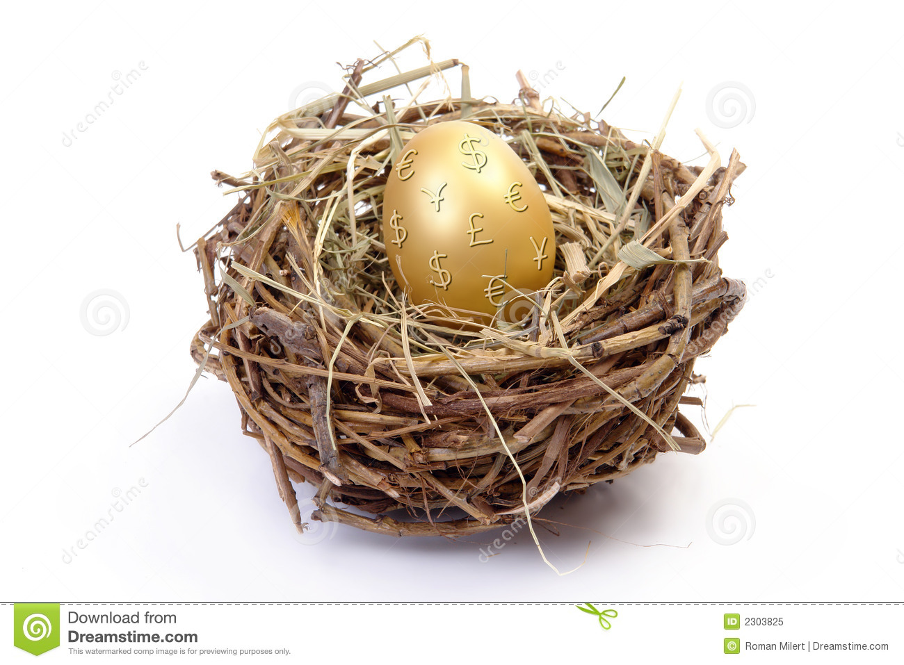 Golden egg in nest stock image  Image of painted, gilded
