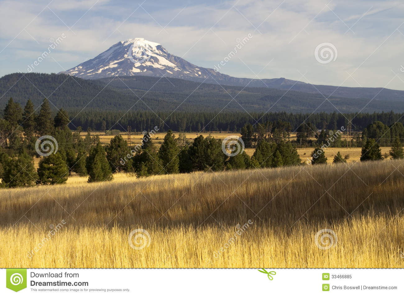Golden grassland countryside mount adams mountain farmland for States with free land