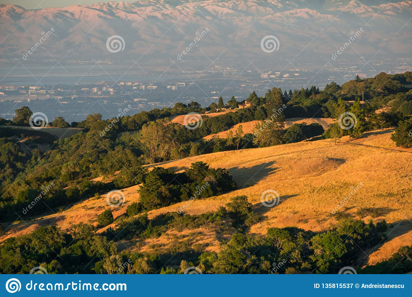 Golden hills in the sunset light; Sunnyvale, San Francisco bay area in the background, California