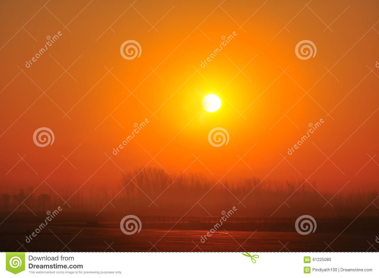 Download Golden Hour Tranquil Sunrise Stock Photo - Image of morning, silhouettes: 61225080