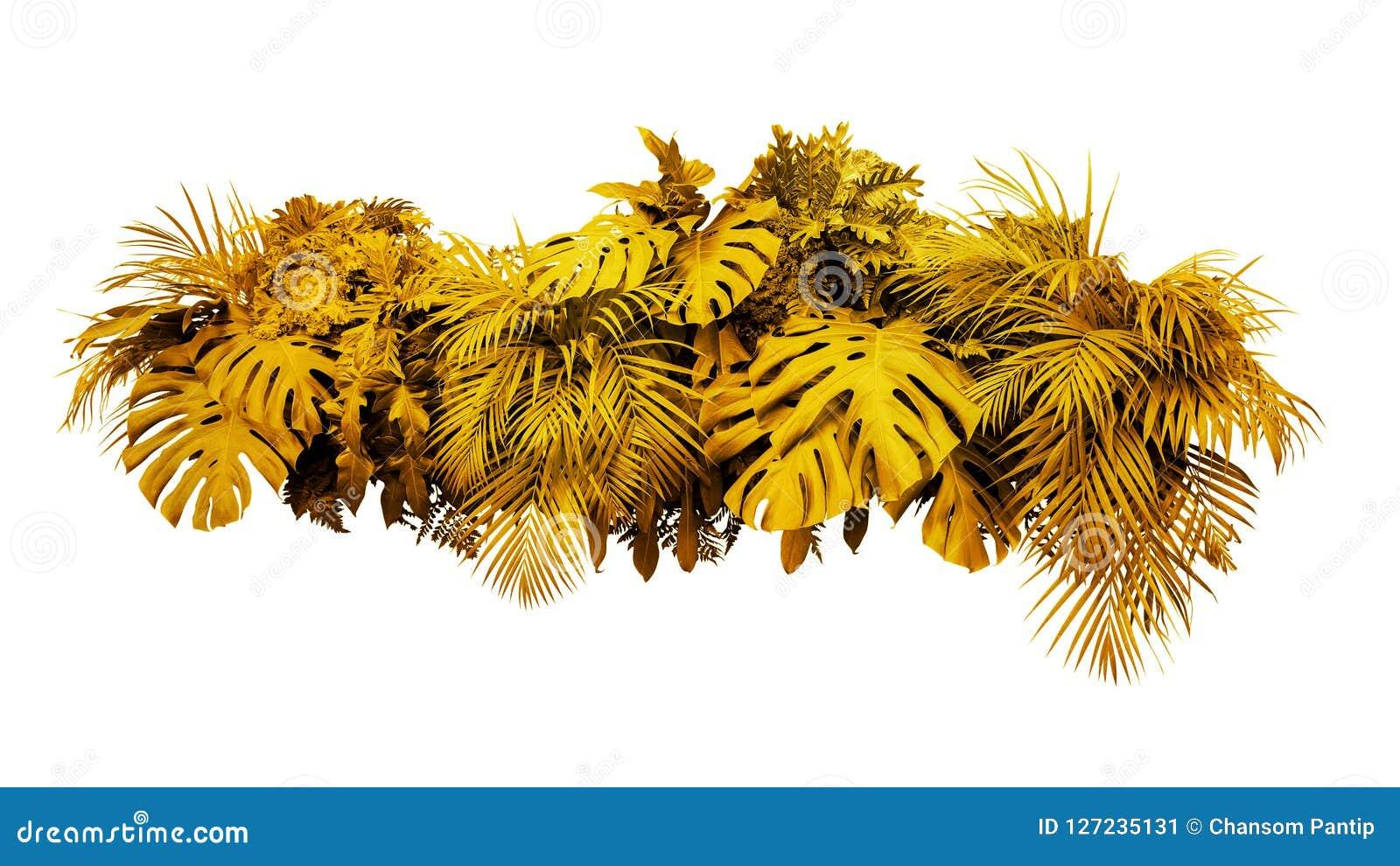 New Years Foliage >> Golden Leaves Tropical Foliage Plant Bush Floral Arrangement Gold