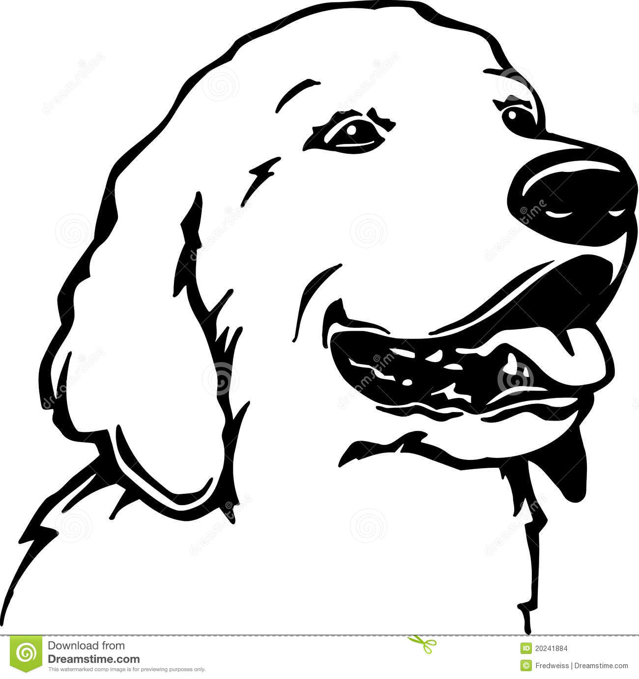 Line Drawing Golden Retriever : Golden retriever stock vector illustration of