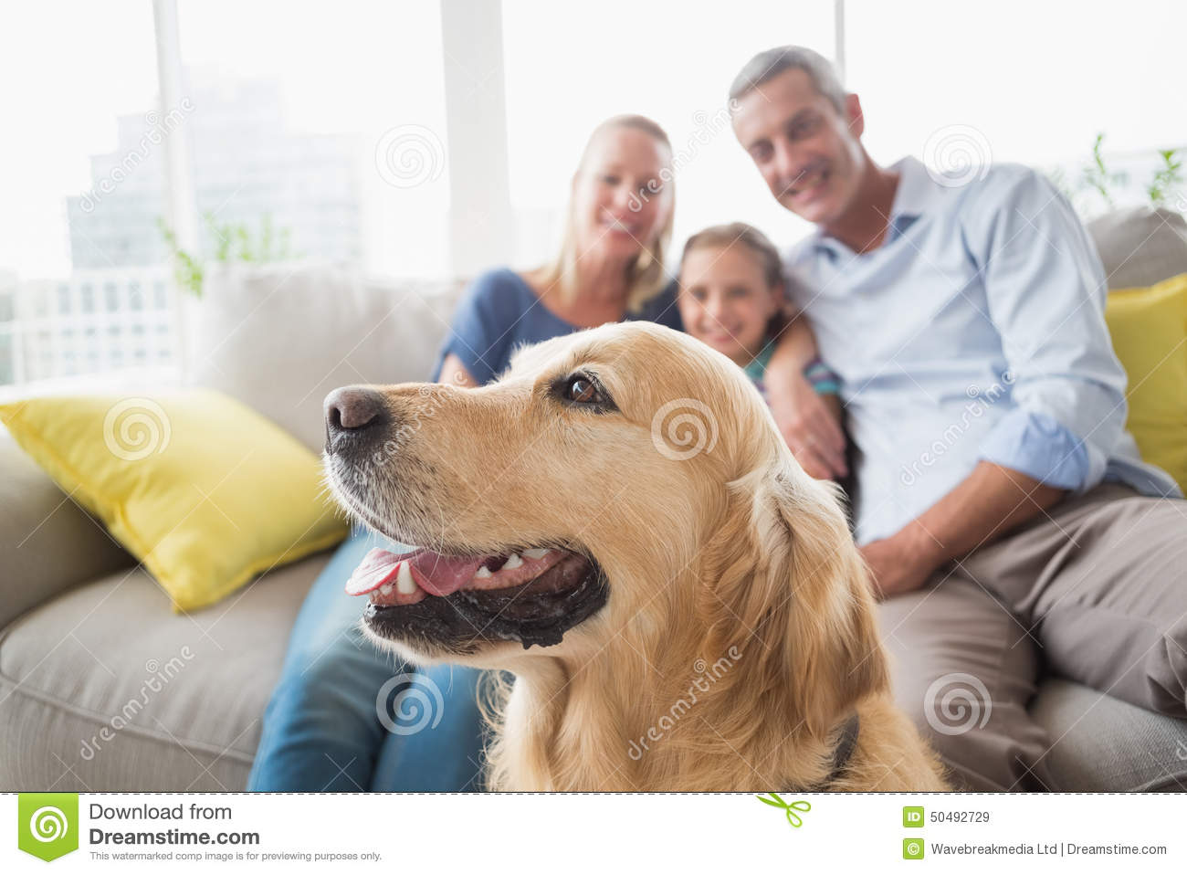 Golden Retriever With Family At Home Stock Image Image Of