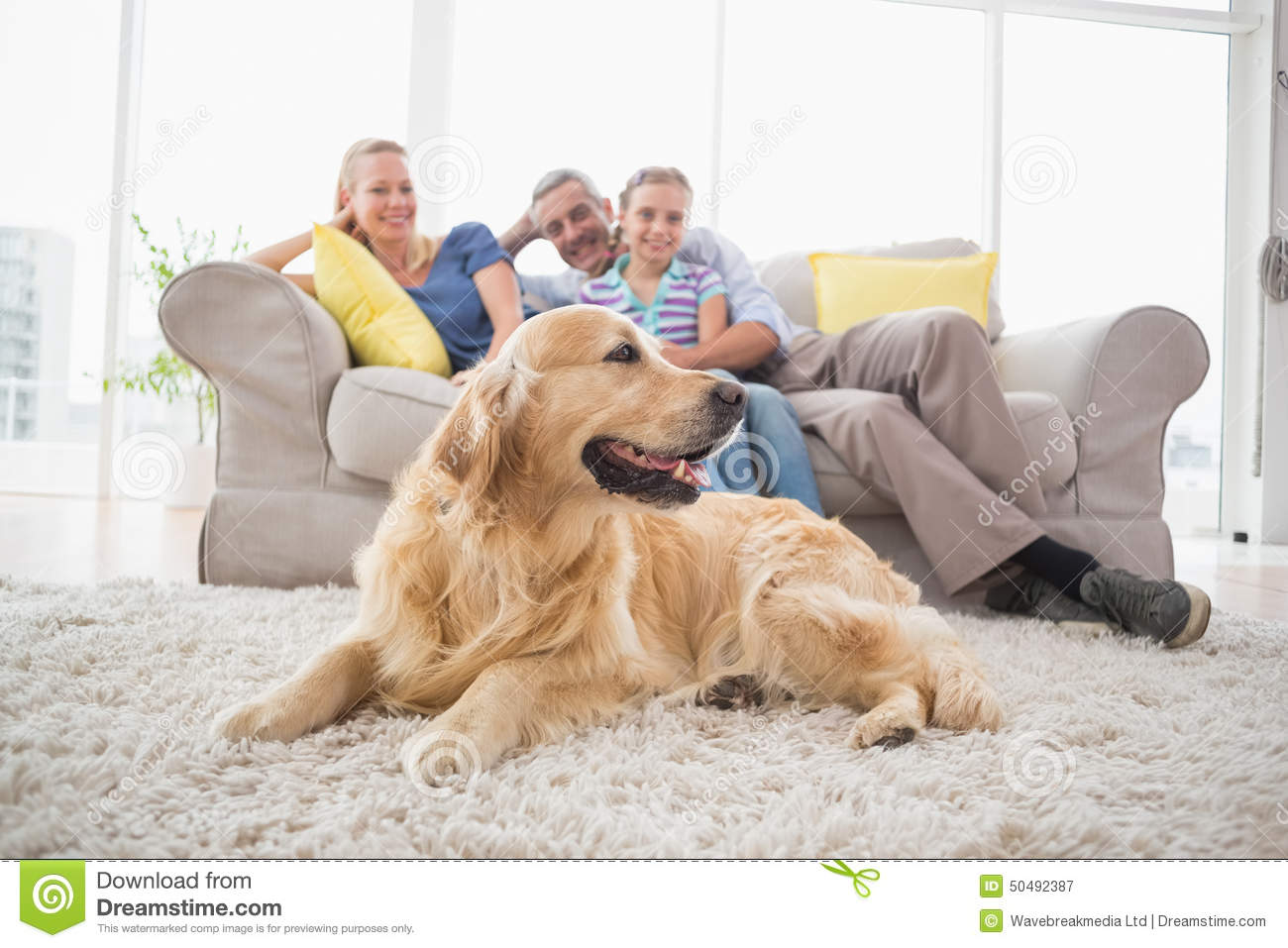 Golden Retriever With Family At Home Stock Photo - Image ... Relaxing Dog Music Audio