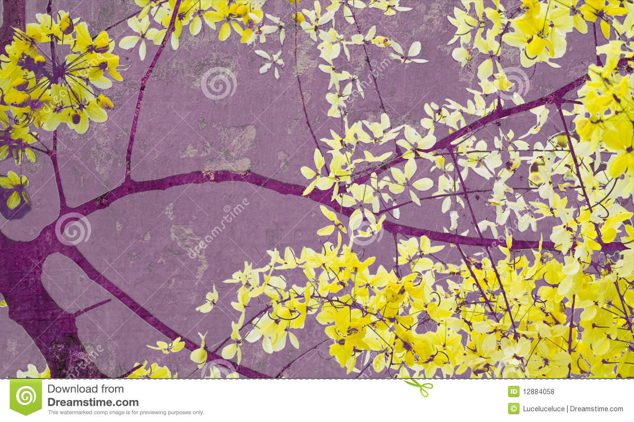 Paper Flower Golden Shower Tree On Purple Wall Art Print Royalty Free