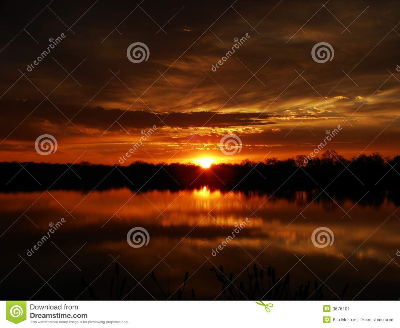 Golden Sunrise Reflections