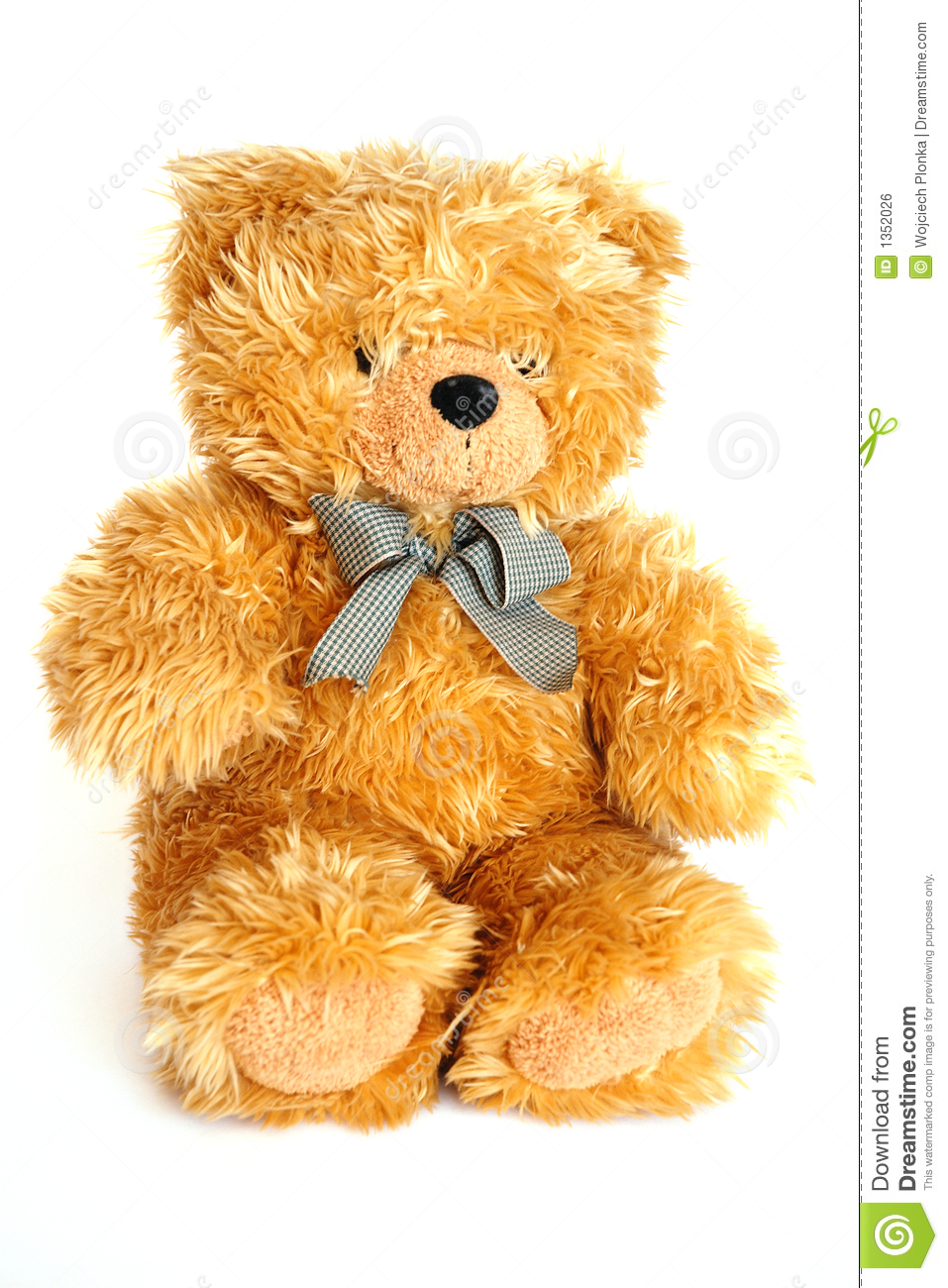 golden teddy bear stock photo image of details gold